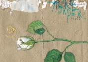 Rose bud on handmade paper