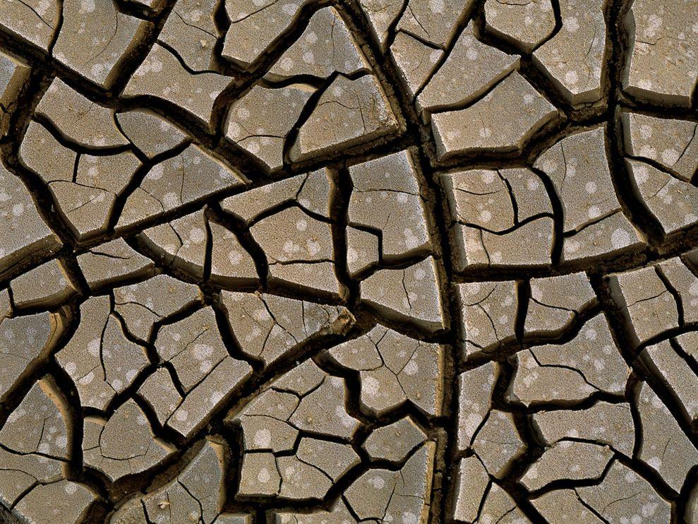 mud-cracks_9389_990x742.jpg